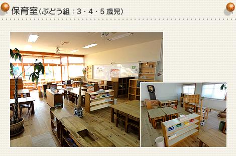 保育室(ぶどう組)